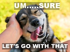 its-um-phrase