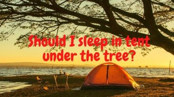 Should I sleep in tent under the tree